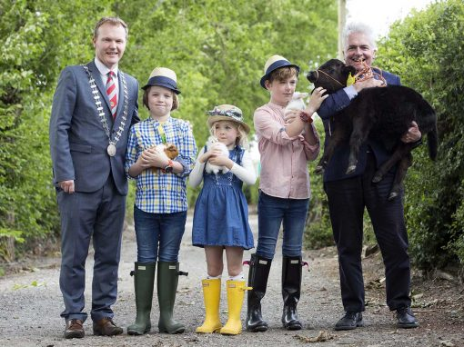 ON COUNTDOWN TO THE CORK SUMMER SHOW in JUNE 2017